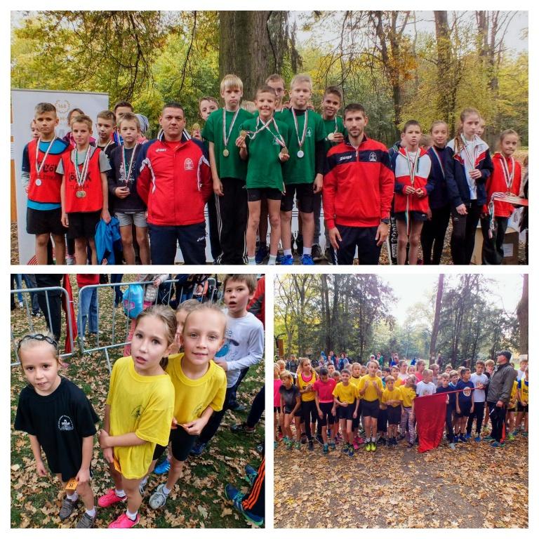 Sport XXI. regionális mezei futóverseny
