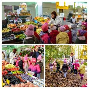 Margaréták, őszi piac, betakarítás, kerti munkák